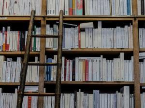 Lectura en la Alcarria. Revitalización de la biblioteca (Edición 1)