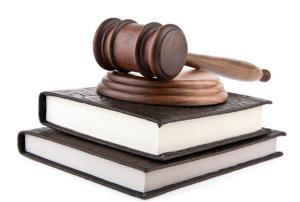 Jornada de Aplicación del Procedimiento Administrativo y Régimen Jurídico (Guadalajara) (Edición 1)