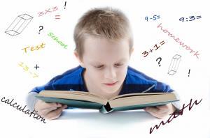 Mejora de las competencias lingüística y matemática en la etapa de Infantil y Primaria. (Edición 1)