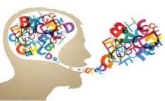 Competencia lingüística (Edición 1)