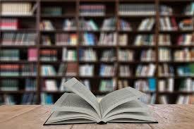 Catalogación y descripción del fondo bibliográfico de la biblioteca del I.E.S. Izpisúa Belmonte (Edición 1)